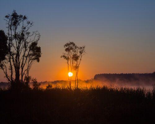 Queensland-Biloela-Location (45)